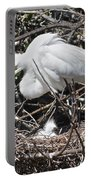 Nesting Great Egret With Chick Portable Battery Charger
