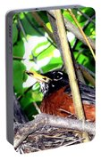 Nesting Robin Portable Battery Charger