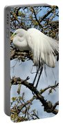 Nesting Time Portable Battery Charger