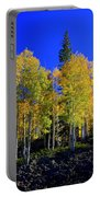 Nevada Fall Portable Battery Charger