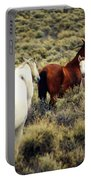 Nevada Wild Horses Portable Battery Charger