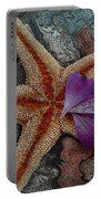 Never Forgotten- Starfish Art Portable Battery Charger