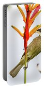 New Caledonia Honeyeater Portable Battery Charger