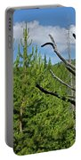 New Growth Portable Battery Charger