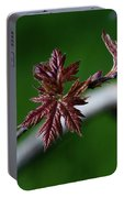 New Leaves Portable Battery Charger