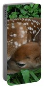 New Life  Portable Battery Charger