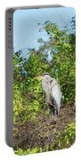 New Nest For Great Blue Heron Portable Battery Charger