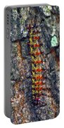 New Orleans Buck Moth Caterpillar Portable Battery Charger