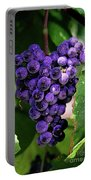New Wine Portable Battery Charger