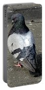 New York City Pigeons # Portable Battery Charger