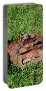 Newborn Red Deer Portable Battery Charger