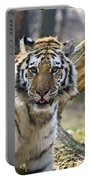 Nice Kitty Portable Battery Charger