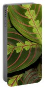 Nice Leaves Portable Battery Charger
