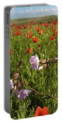 Night Flowering Catchfly And Poppies Portable Battery Charger