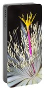 Night Time Celebration Portable Battery Charger