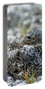 Nighthawk Portable Battery Charger