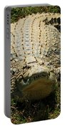 Nile Crocodile - Africa Portable Battery Charger