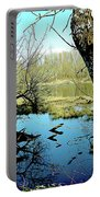 Nisqually Pond Portable Battery Charger