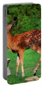 No I'm Not Bambi Portable Battery Charger