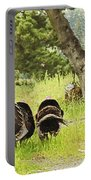 No Parking Wild Turkeys Portable Battery Charger