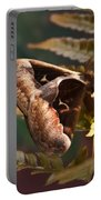 Nocturnal Moth Portable Battery Charger