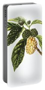 Noni Fruit Art Portable Battery Charger