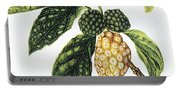 Noni Fruit Portable Battery Charger