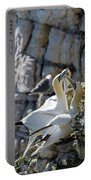 North Atlantic Gannets Portable Battery Charger