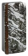 North Cascades Forest Portable Battery Charger