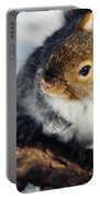 North Pond Squirrel Portable Battery Charger
