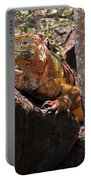 North Seymour Island Iguana In The Galapagos Islands Portable Battery Charger