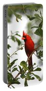 Northern Cardinal - In The Wind Portable Battery Charger
