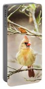 Northern Cardinal Female - Digital Painting Portable Battery Charger