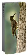 Northern Flicker Halo Portable Battery Charger