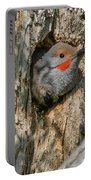 Northern Flicker Pokes His Head Out Portable Battery Charger