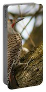 Northern Flicker Woodpecker 1 Portable Battery Charger