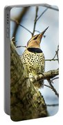 Northern Flicker - Woodpecker Portable Battery Charger