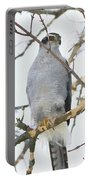 Northern Goshawk Portable Battery Charger