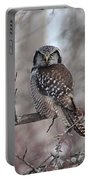 Northern Hawk Owl 9470 Portable Battery Charger