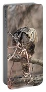 Northern Hawk Owl Having Lunch 9450 Portable Battery Charger