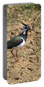 Northern Lapwing Portable Battery Charger