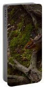 Northern Ohio Chipmunk Portable Battery Charger