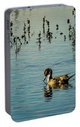 Northern Pintail At The Wetlands Portable Battery Charger