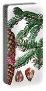 Norway Spruce, Pinus Abies Portable Battery Charger