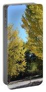 November Gold Portable Battery Charger