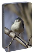 Nuthatch On Perch Portable Battery Charger