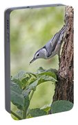 Nuthatch On The Move Portable Battery Charger