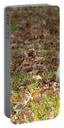 Nuts For Fall Portable Battery Charger