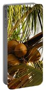 Nuts On Tree  Portable Battery Charger