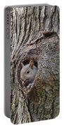 Nutty Squirrel Surprise  Portable Battery Charger